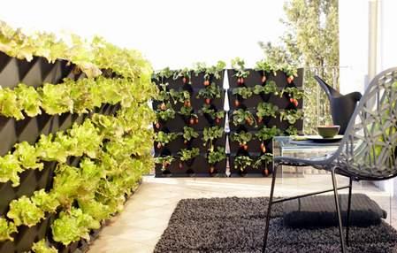vertikalni vrt na ogradi terase